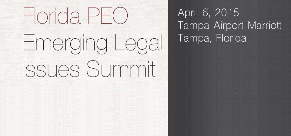 2015-Emerging-Legal-Issues-Summit-banner